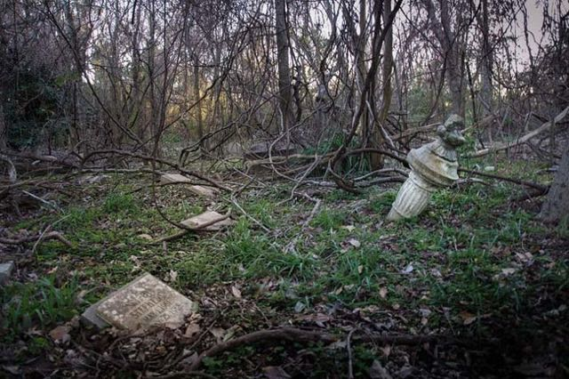 cimitero animali Seph Lawless 001