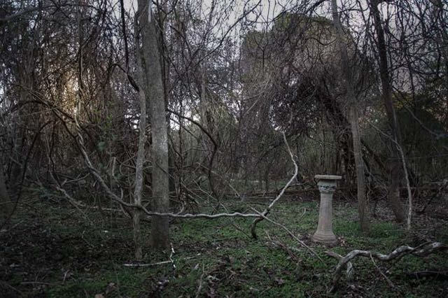 cimitero animali Seph Lawless 015
