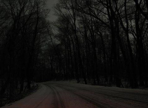 primose-road